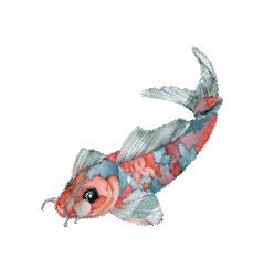 Susanne Okamoto