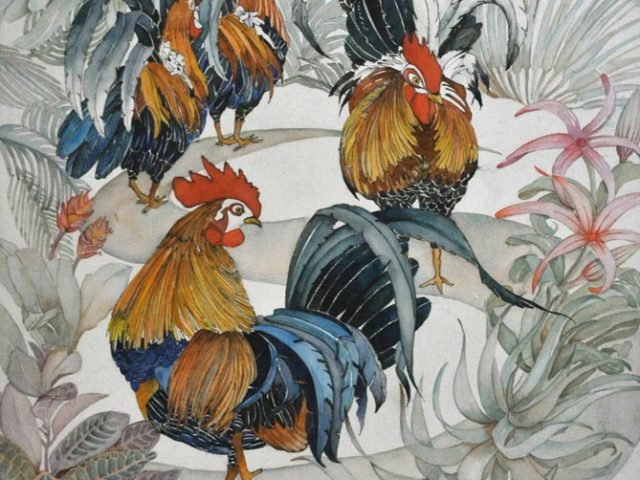 Kauai Roosters, Watercolor, 23″ x 26″