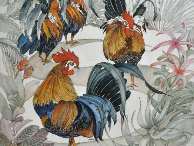 Kauai Roosters